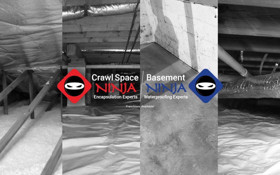 Growin' It: Crawl Space Ninja